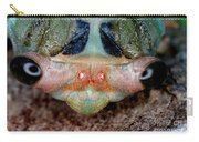 Head Of Cicada Carry-all Pouch