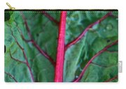 Heart Wise Carry-all Pouch by Susan Herber
