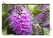 Hebe Dona Diana Flowers Carry-all Pouch