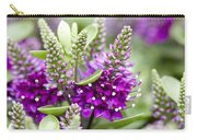 Hebe Hebe Sp Dona Diana Variety Flowers Carry-all Pouch