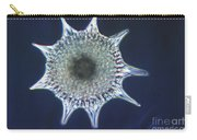 Heliodiscus Sp. Radiolarian Lm Carry-all Pouch