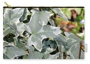 Helix Glacier Ivy Carry-all Pouch