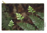 Hen And Chicken Fern Asplenium Carry-all Pouch