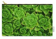 Hens And Chicks Plants Sempervivum Carry-all Pouch