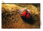 Hermit Crab On Coral Carry-all Pouch