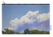 High Park Fire Larimer County Colorado  Carry-all Pouch by James BO  Insogna