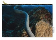 Highly Venomous Olive Sea Snake Carry-all Pouch