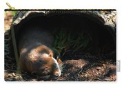 Hit The Otter Snooze Carry-all Pouch