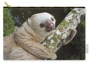 Hoffmanns Two-toed Sloth Costa Rica Carry-all Pouch by Suzi Eszterhas