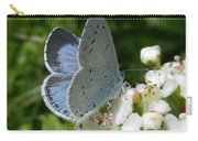 Holly Blue Carry-all Pouch