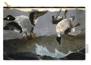 Homer: Right & Left, 1909 Carry-all Pouch
