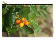 Honeysuckle Fruit 1 Carry-all Pouch