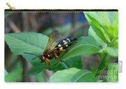 Hornet Carry-all Pouch