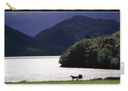 Horse And Buggy By Waterfront Carry-all Pouch