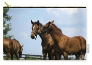 Horse Foul Play Vi Carry-all Pouch