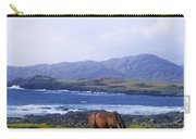 Horse Grazing In A Field, Beara Carry-all Pouch