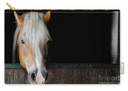 Horse In The Stable Carry-all Pouch