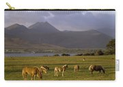 Horses Grazing, Macgillycuddys Reeks Carry-all Pouch