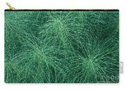 Horsetail Fern Carry-all Pouch