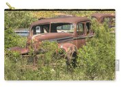 Hudson Sedan Carry-all Pouch