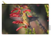 Hummingbird In Flight 1 Carry-all Pouch