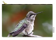 Hummingbird - Little Friend Carry-all Pouch