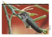 Hummingbird Nap Time  Carry-all Pouch