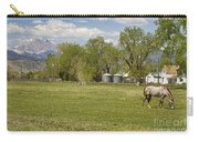 Hygiene Colorado Boulder County Scenic View Carry-all Pouch