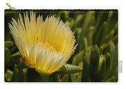 Ice Plant Bloom Carry-all Pouch
