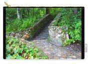 Ichetucknee Stairway Carry-all Pouch