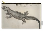 Iguana, 1585 Carry-all Pouch