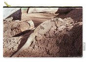 Iguana In The Sun Carry-all Pouch