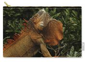 Iguana Costa Rica Carry-all Pouch