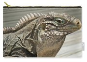 Iguana Two Carry-all Pouch