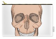Illustration Of Anterior Skull Carry-all Pouch