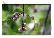 Immature Acorns Carry-all Pouch