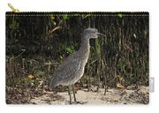Immature Blacked Crowned Night Heron Carry-all Pouch