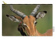 Impala Aepyceros Melampus Buck Africa Carry-all Pouch