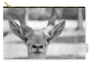 Impala -black And White Carry-all Pouch