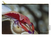 Imperator Commensal Shrimp On Eyed Sea Carry-all Pouch