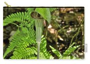 Jack-in The-pulpit_4588 Carry-all Pouch