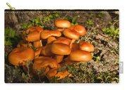 Jack Olantern Mushrooms 30 Carry-all Pouch