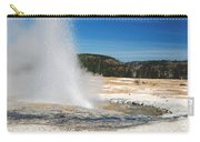 Jewel Geyser 9507 Carry-all Pouch