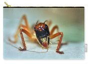 Jiminy Cricket Carry-all Pouch