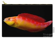 Jordans Fairy Wrasse Carry-all Pouch