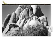 Joshua Tree Center Bw Carry-all Pouch