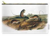 Jumping Mouse, 1846 Carry-all Pouch