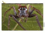 Jumping Spider Papua New Guinea Carry-all Pouch by Piotr Naskrecki