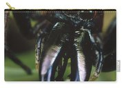 Jumping Spider Portrait, Queensland Carry-all Pouch