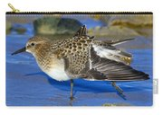 Juvenile Baird's Sandpiper Carry-all Pouch